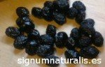 Variety of Black Olive of Sabiñan