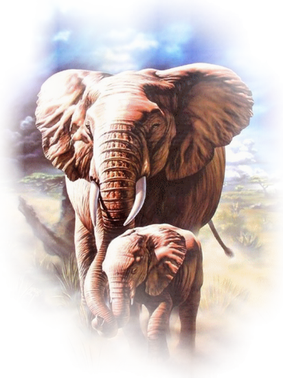 tubes_elephants_tiram_210