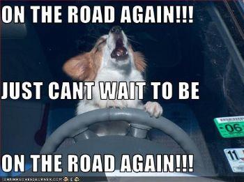 heading to school in Arizona