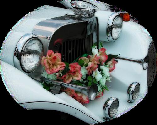 tubes_fleurs_saint_valentin_tiram_94