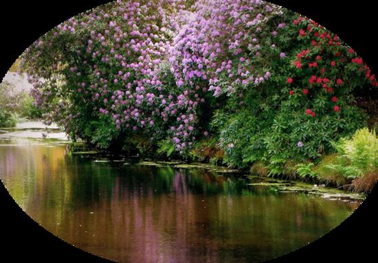 paysage_tiram_398