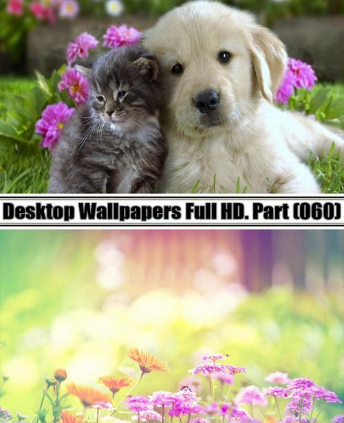 Desktop Wallpapers  HD. Part 60
