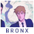 Bronx Nemesis