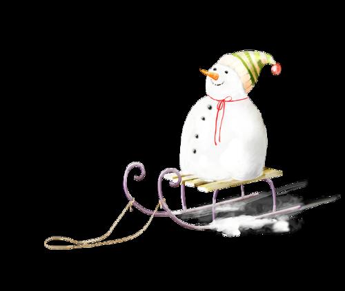 bonhommes-de-neiges-tiram-264