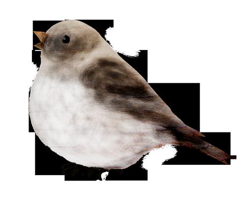 tubes_oiseaux_tiram_78