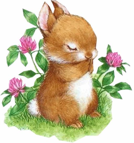 lapins_paques_tiram_376