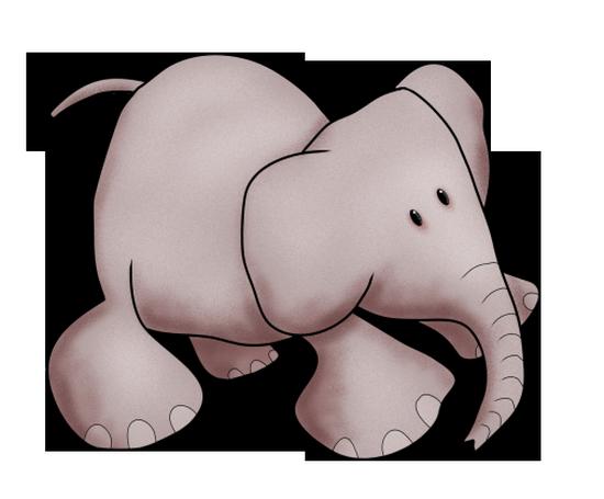 tubes_elephants_tiram_44