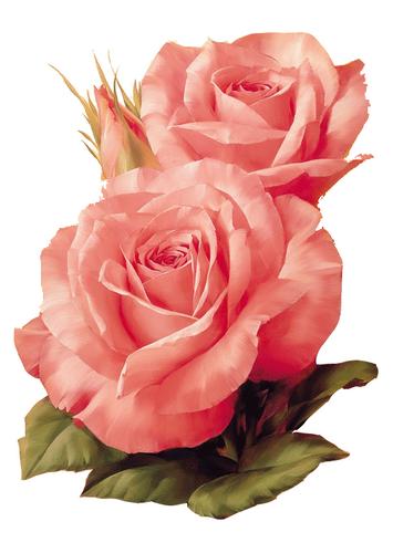 tubes_fleurs_saint_valentin_tiram_110