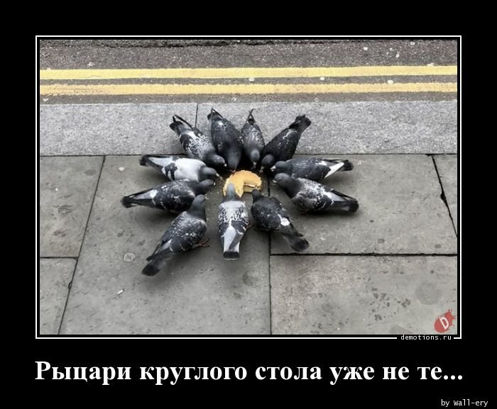 1533454077_rycari_kruglogo_stol_demotions_ru