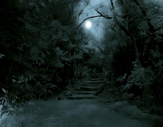 paysage-halloween-68