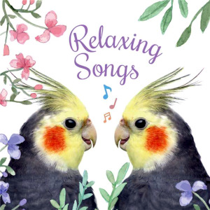 Compilations incluant des chansons de Libera Relaxing_Songs_300