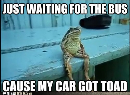 car breakdown - car got toad