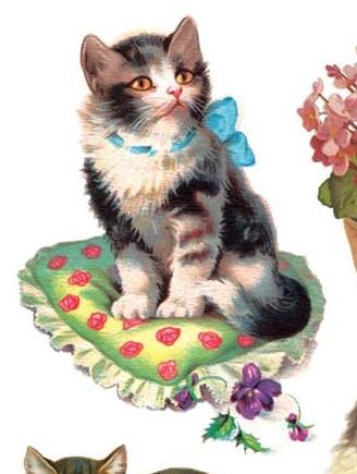 Gatos Vintage - Página 2 Sin-t-tulo-972