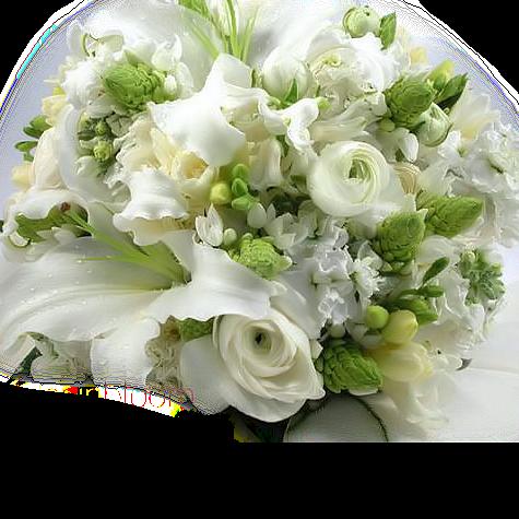 tubes_fleurs_tiram_713
