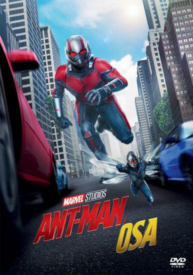 Ant-Man i Osa / Ant-Man and the Wasp (2018) PLDUB.AC3.DVDRip.XviD-GR4PE | Dubbing PL
