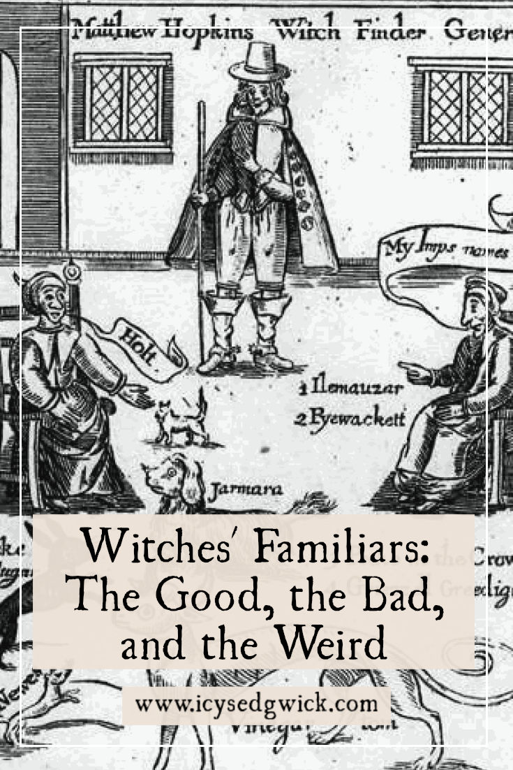 Many think of cats or toads when they think of witches' familiars. But what else acted as familiars? And what did they actually do? Click here to find out.