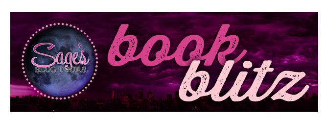 bookblitz_banner