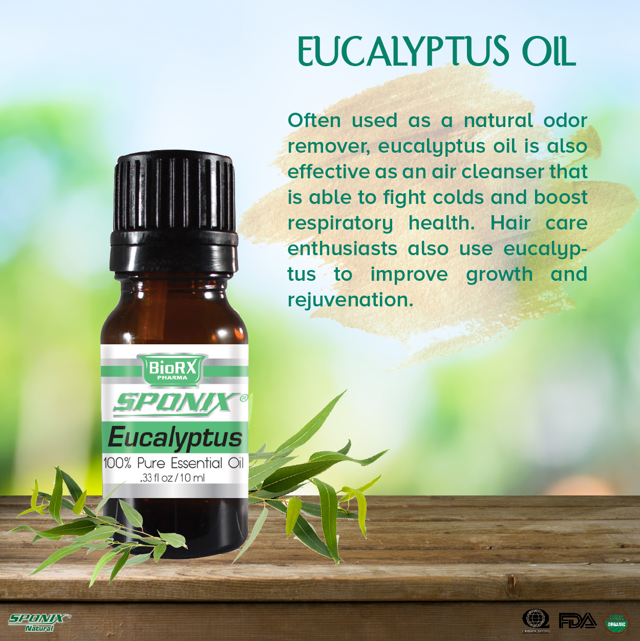 sponix_items_eucalyptus