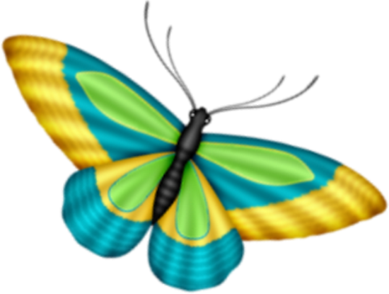 tubes_papillon_tiram_755