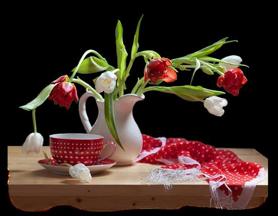 tubes_fleurs_tiram_135