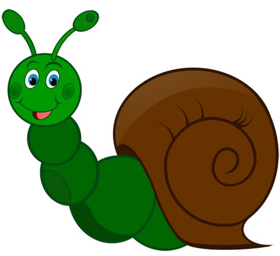 tubes_escargots_tiram_222