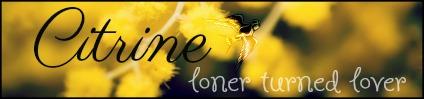 7003727_yellow_flowers_macro_photography_2.jpg