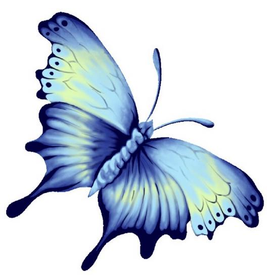 tubes_papillon_tiram_285