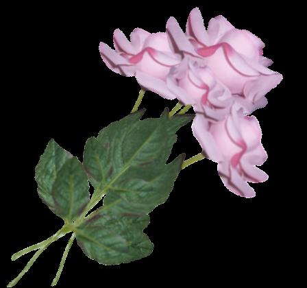 tubes_fleurs_tiram_762