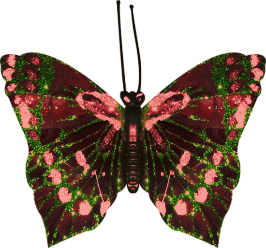 tubes_papillon_tiram_675