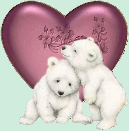 animaux_st_v_tiram_239