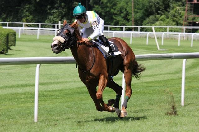 jockey_horse_racing