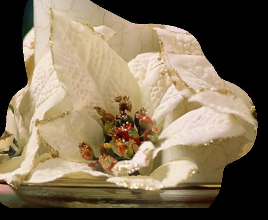 tubes_fleurs_tiram_690