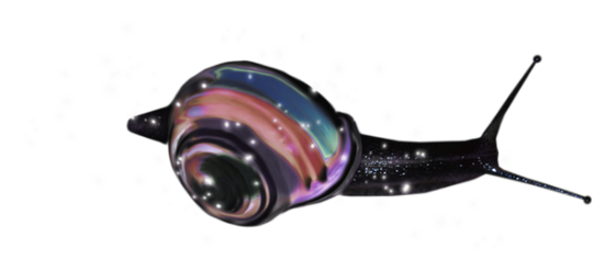 tubes_escargots_tiram_212