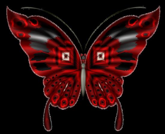 tubes_papillon_tiram_78