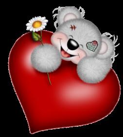 teddy_saint_valentin_tiram_202