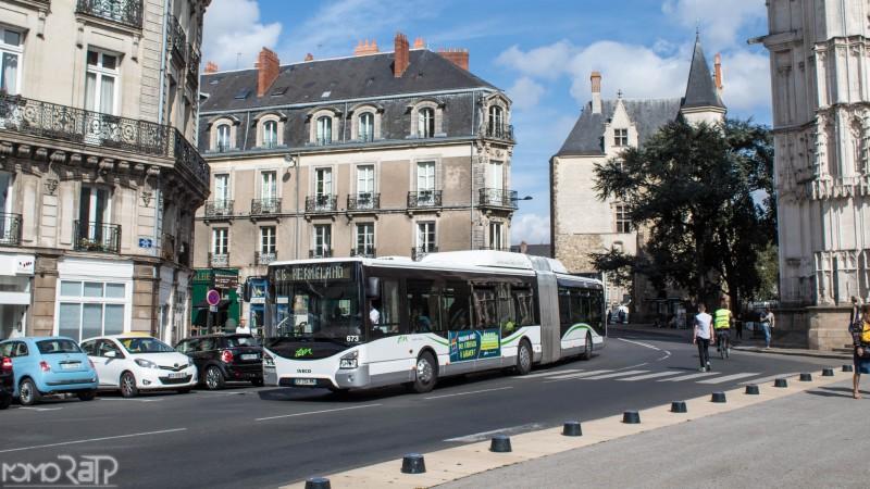 Nantes (44) - TAN - Page 3 IMG_9772