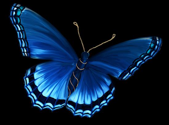 tubes_papillon_tiram_104