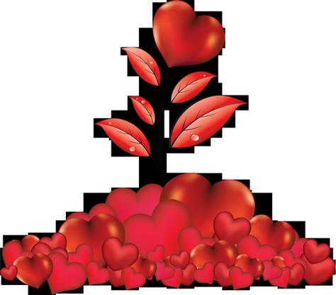 coeur_saint_valentin_tiram_409
