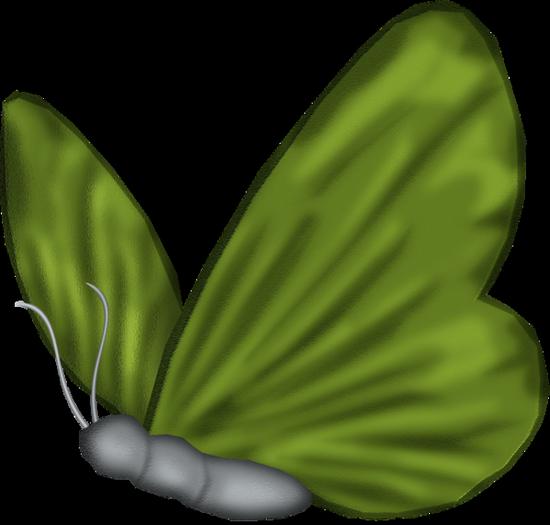 tubes_papillon_tiram_645