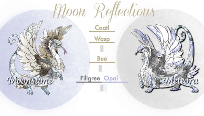 Moon_Reflections_Card.png