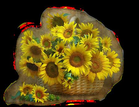 tubes_fleurs_tiram_861