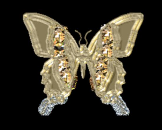 tubes_papillon_tiram_701
