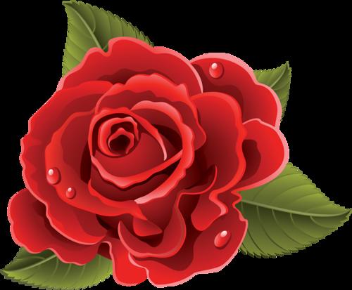 tubes_fleurs_saint_valentin_tiram_187