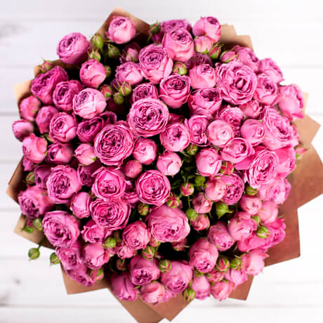 pink_roses_misty_bubles_img.jpg