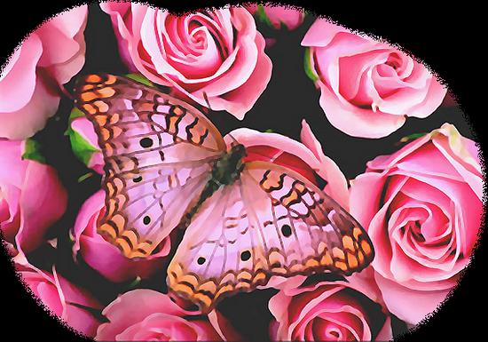 tubes_papillon_tiram_472