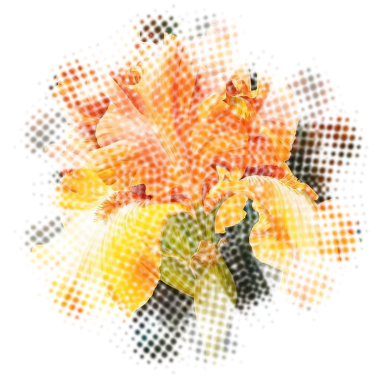tubes_fleurs_tiram_99