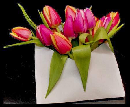 tubes_fleurs_tiram_805