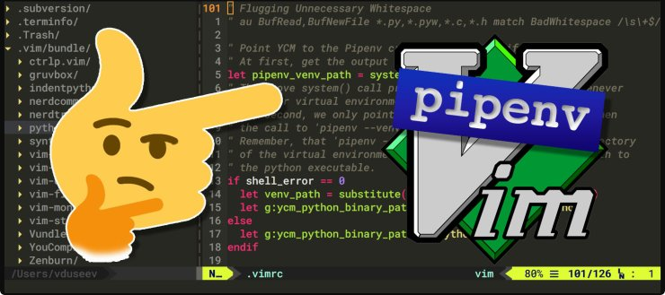 Vim detects Pipenv python environment config