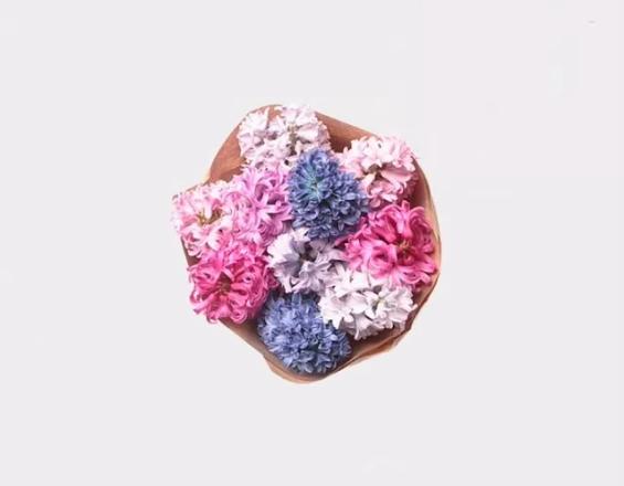 букет из цветов гиацинт
