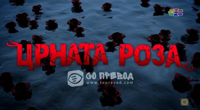 Црната Роза 289 епизода (Крај на серијата)